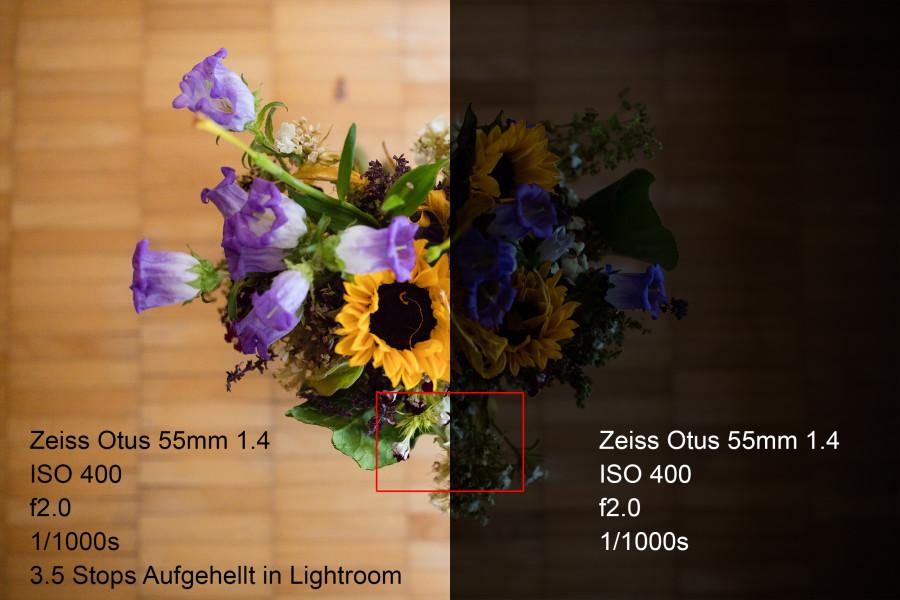 Canon 5DS/R ISO 400, f2.0, 1/1000s Zeiss Otus 55mm f.14 Um 3.5 Blenden in Lightroom aufgehellt