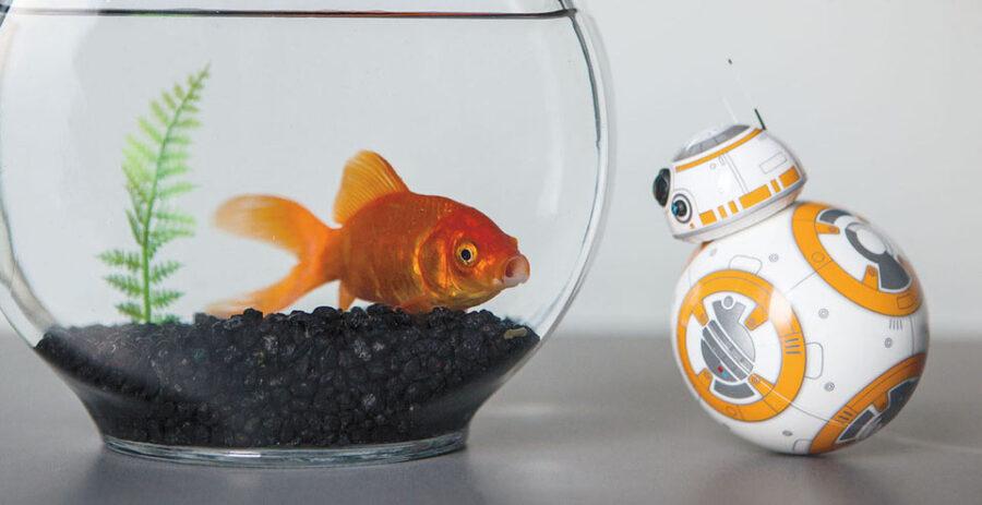 Star Wars BB-8 von Sphero